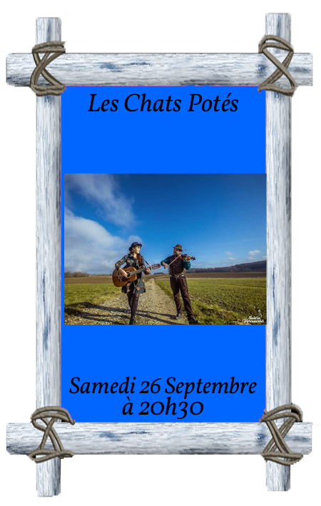 Affiche chats potes